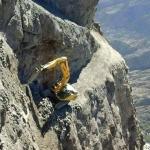 excavator-mining-mayhem