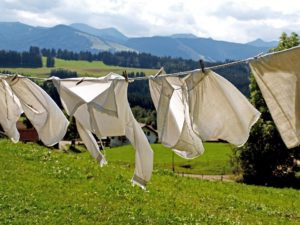 Laundry Detergents and Pollution